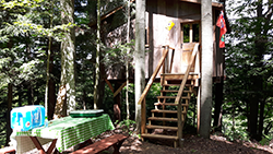 Eagles Nest (Treehouse)